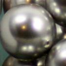 Wachsperlen light grey