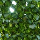 Doppelkegel olivine Satin
